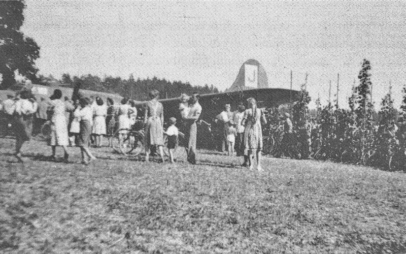 Bei der Landung des Bombers war eine Frau gerade beim Bohnenpflücken. Sie stülpte sich den Korb über den Kopf und kam erst später wieder unter dem Flügel des Bombers hervor. (215_1)