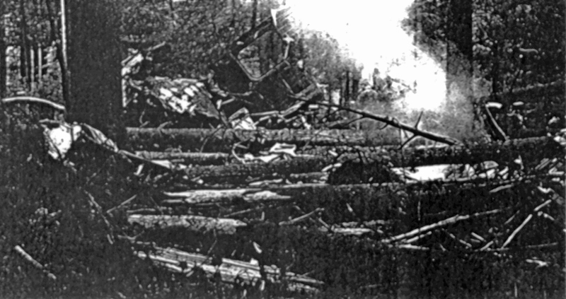 Rauchende Teile und umgeknickte Bäume waren alles was vom Bomber übriggeblieben war. (147_3)