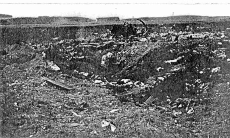 Auch diese Trümmer gingen zum Glück ausserhalb des Dorfes auf einem Feld nieder. (162_1)