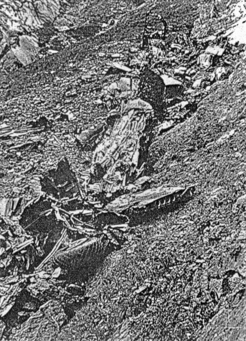 Von der Maschine blieben nur noch kleinere Teile im unwegsamen Gelände liegen. (176_3)