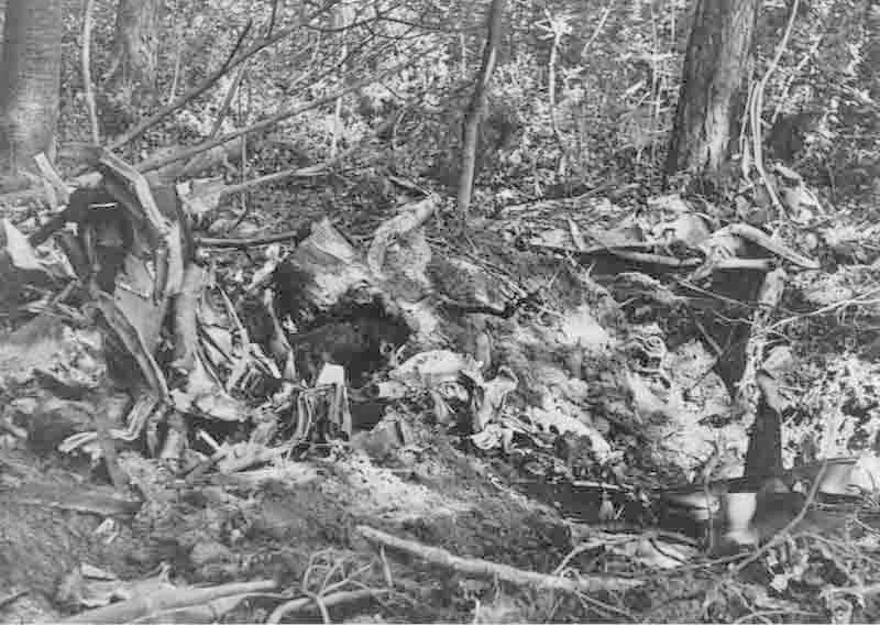Oblt. Treu wurde bereits vor dem Absturz tödlich getroffen. (296_2)