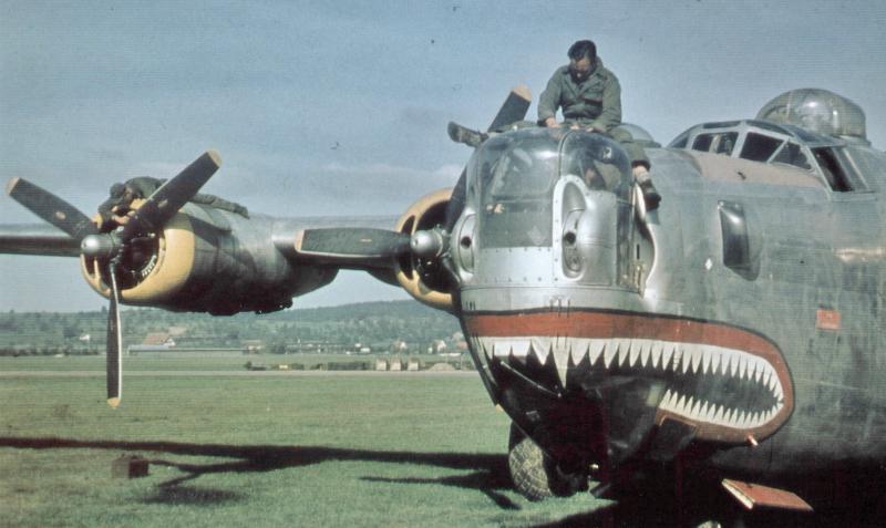 """Der """"Hai"""" wenige Tage vor der Überführung nach Burtonwood. Die Hai-Visage war das offizielle Staffelkennzeichen der 756. Staffel. (195_1)"""