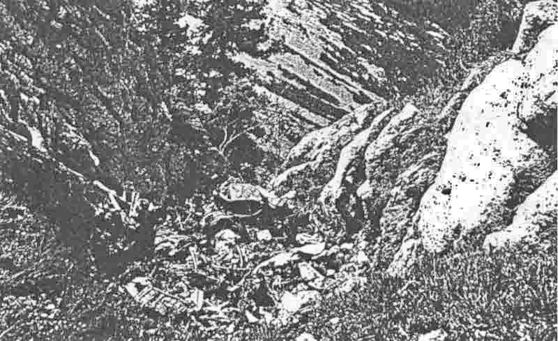 Die Trümmer der Maschine waren nur schwer zu identifizieren. Zuerst glaubte man die abgestürzte Maschine wäre eine Me 110. Viele Teile wiesen jedoch auf eine Ju 88 hin. (334_1)
