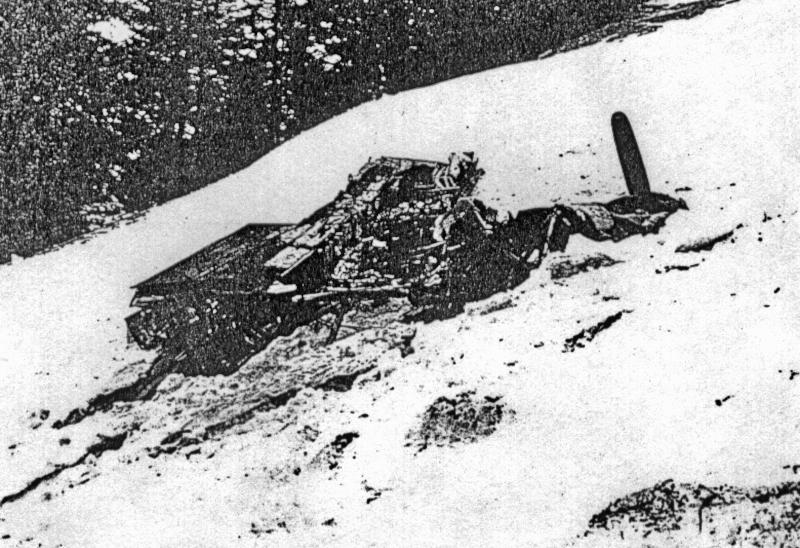 Ein Merlin Motor im Schnee. (111_2)