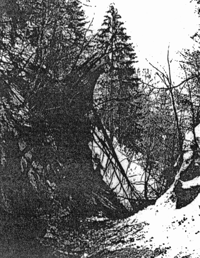 Auch der Rumpf lag in einem steilen Tobel. (240_2)