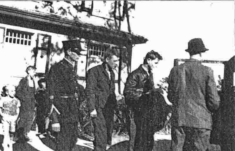 Der Pilot und ein Besatzungsmitglied werden von der Polizei zu einem weiteren Verhör nach Luzern abgeführt. (270_3)
