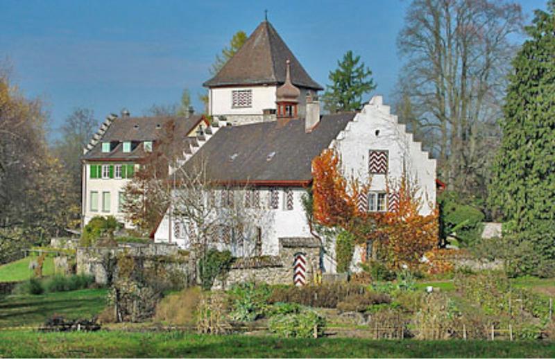 Der führerlose Bomber suchte sich ausgerechnet das Schloss Wyden bei Ossingen als Absturzort aus. (162_2)