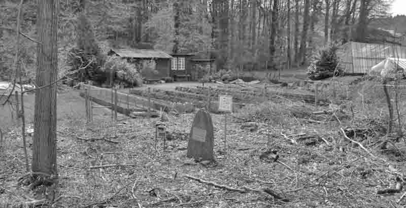 Im Unterholz am Rand des Hürstwaldes stellten Studienkollegen dem Gedenkstein auf. (297_4)