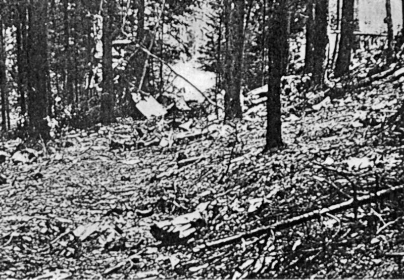 Die Absturzstelle im Wald bei Adligenswil. (192_3)