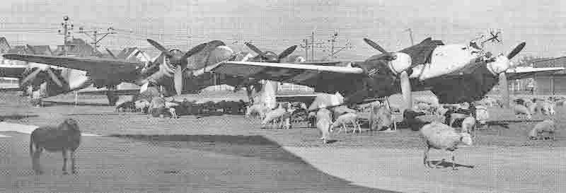 Ländliche Idylle in der Nachkriegszeit auf dem Flugplatz Dübendorf mit den drei deutschen Nachtjägern. (363_1)