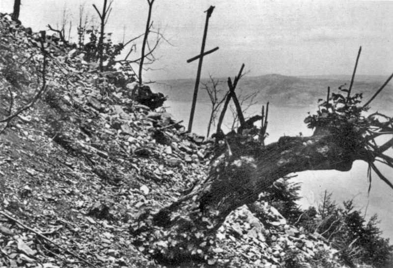 Hoch über dem Genfersee hat die Explosion der Maschine eine Lichtung in den Wald gerissen. (95_2)